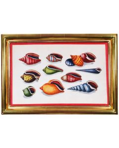 Chinese Export Watercolours on Pith Paper. Set of Twelve Shells.